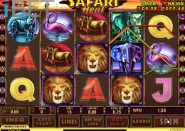 safari-heat-newtown-casino-slot-picture-1